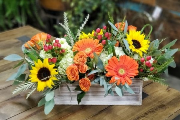 Autumn Garden Flowers for All Occasions