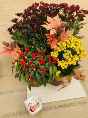 Autumn Garden Walk Planter Basket in Coleman, WI | COLEMAN FLORAL & GREENHOUSES