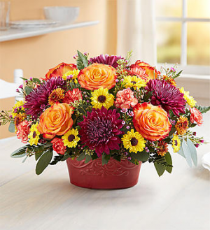 Autumn Gathering 1-800 FLOWERS BOUQUET in Saint Louis, MO | SOUTHERN FLORAL SHOP
