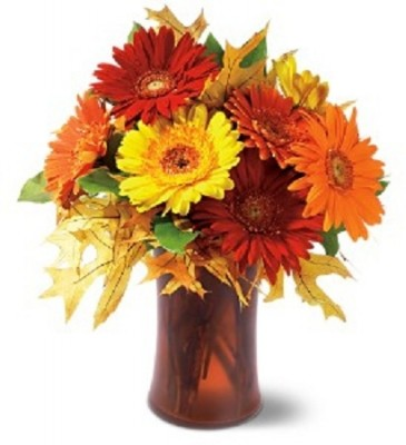 Fall Gerbera Daisy Bouquet Autumn Gerbera ...
