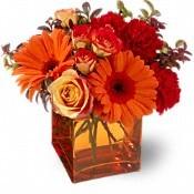 Autumn Gerberas & Roses Fall Bouquet in Whitesboro, NY | KOWALSKI FLOWERS INC.