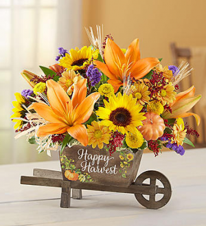 Autumn Happy Harvest On Sale  regularly $59.99, now $49.99 in Gainesville, FL   PRANGE'S FLORIST