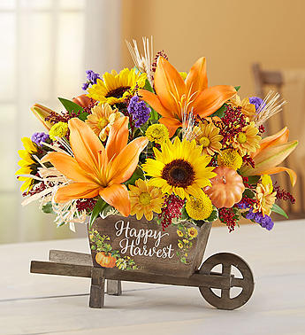 Autumn Happy Harvest Bountiful Fall Blooms for Desk Top