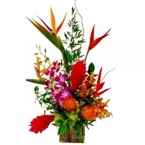 A  Day  in Florida Tropical Bouquet in Coral Springs, FL | Hearts & Flowers of Coral Springs