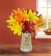 Autumn Lily Bouquet + Free Vase