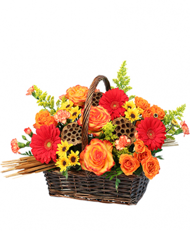 Autumn lotus basket fall colors
