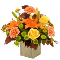 Autumn Prairie Arrangement in Naugatuck, CT | TERRI'S FLOWER SHOP