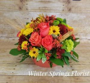 Autumn Radiance  Arrangement  in Winter Springs, FL   WINTER SPRINGS FLORIST AND GIFTS