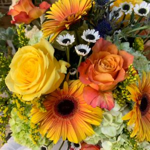Autumn Sunrise Vase Arrangement in Northport, NY | Hengstenberg's Florist