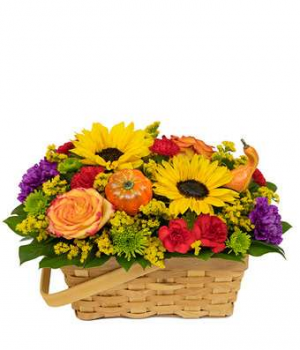 Autumn Time Flower Basket  in Valley City, OH | HILL HAVEN FLORIST & GREENHOUSE