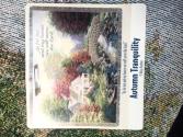 Autumn TranquilityThrow