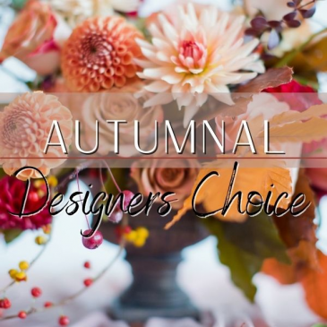 Autumnal Designer's Choice Flowers for All Occasions