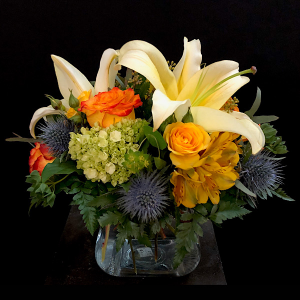 Awake Cube  in Chesterfield, MO | ZENGEL FLOWERS AND GIFTS