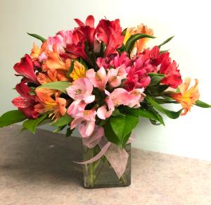 AWE-strameria Bouquet APPRECIATION BOUQUET in Lewiston, ME | BLAIS FLOWERS & GARDEN CENTER