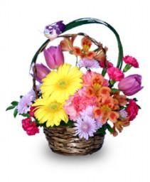 SPRING ARRIVAL Flower Basket