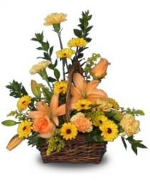 BEAUTIFUL SUNSET Basket of Flowers