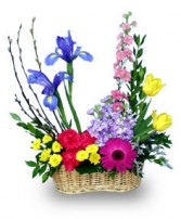 COLORFUL BORDER Flower Basket