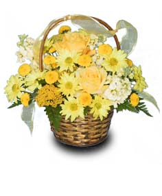Sunshine in a Basket  in Caldwell, ID | Bayberries Flowers & Gifts