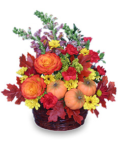 PUMPKIN PLEASURES Basket of Flowers in Chattanooga, TN | GRAFE STUDIO