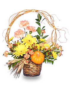 AUTUMN ARBOR Flower Basket in Balsam Lake, WI | BALSAM LAKE PRO-LAWN INC.