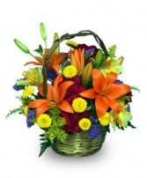 COLORFUL COLLECTION of Flowers for Fall