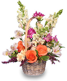 FRESH BREEZE Flower Basket in Glasgow, MT | GLASGOW FLOWER & GIFT