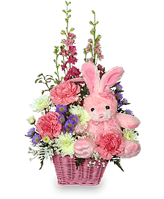 CONGRATULATIONS DAUGHTER New Baby Flowers in Osceola Mills, PA | COLONIAL FLOWER & GIFT SHOP