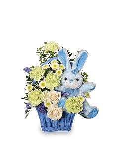 CONGRATULATIONS SON New Baby Flowers in Osceola Mills, PA | COLONIAL FLOWER & GIFT SHOP