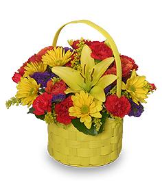 BRIGHT & SUNNY BASKET Floral Arrangement in Antigonish, NS | ELM GARDENS 1988 LTD