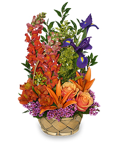 Multi-Color Memories Flower Arrangement in Ozone Park, NY | Heavenly Florist