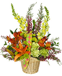 WELCOME SPRING Basket of Flowers