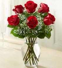Classic Half Dozen Vase Half Dozen Long Stem Red Roses with Baby's Breath and Greenery