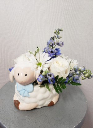 Baa Baa Baaby Boy   in Port Huron, MI | CHRISTOPHER'S FLOWERS