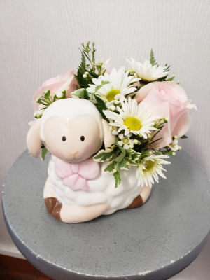 Baa Baa Baaby Girl   in Port Huron, MI | CHRISTOPHER'S FLOWERS