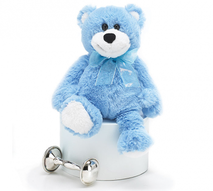 Baby Blue Bear Baby Gift