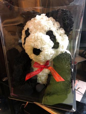 Baby Boo Panda Bear