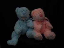Baby Boy and Baby Girl Bears  Birth of a New Baby