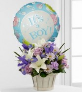 Baby Boy Basket  Includes Balloon