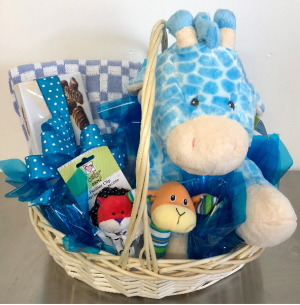 Baby Boy Basket Only 1 Available in Springfield, IL | FLOWERS BY MARY LOU INC