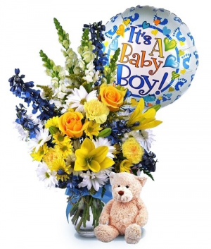 Baby Boy Bundle  in New York, NY | Bella's Flowers New York City