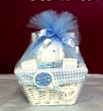 BABY BOY BASKET Gift Basket - 01590 zip code delivery only