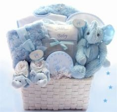 Baby Boy Gift Basket Gift Basket for Newborn in Salisbury, MA ...