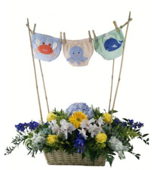 Baby Clothes Hanger, Blue for Boy Pink for Girl Baby in Canton, GA | Canton Florist
