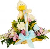 Baby Duckie Basket Baby, Funeral Arrangement