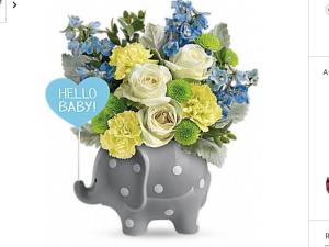 Baby Elephant Fresh flowers in keepsake elephant  in Fairfield, OH | NOVACK-SCHAFER FLORIST