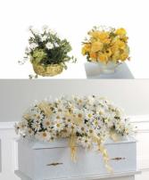 Baby Funeral Premium 1 Package