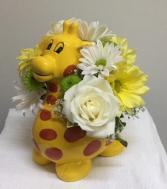Baby Giraffe New Baby
