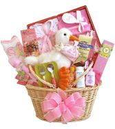 BABY GIRL & MOM  GIFT  BASKET