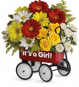 Baby Girl Red Wagon  in Forney, TX | Kim's Creations Flowers, Gifts and More