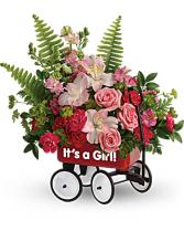 Baby Girl Wagon Iron Wagon
